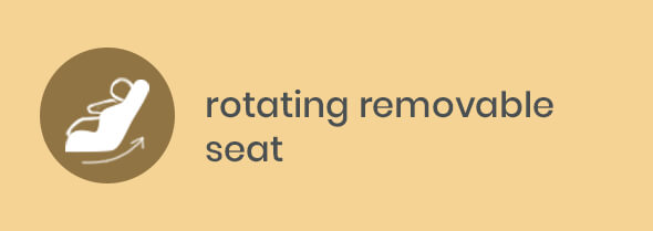 rotating removable seat