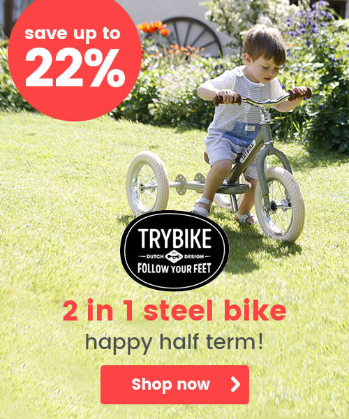 Trybike 2 in 1 Steel Bike