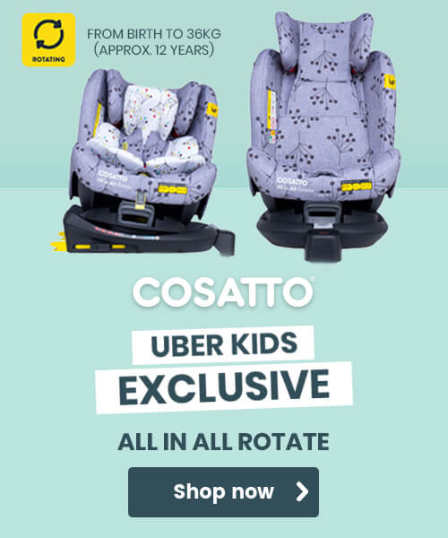 Cosatto All in All car seat hedgerow