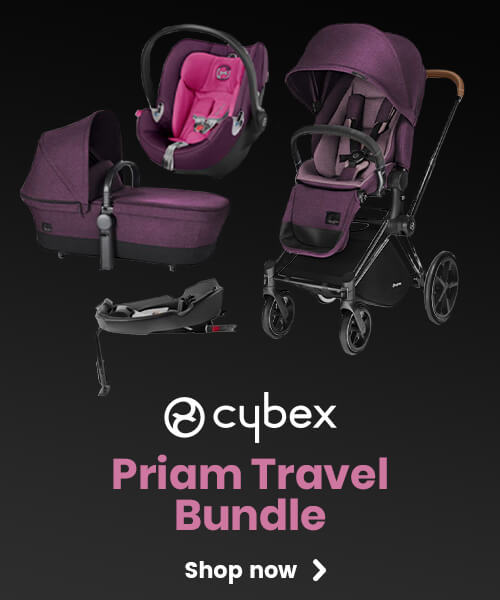 A Cybex Priam Travel Bundle